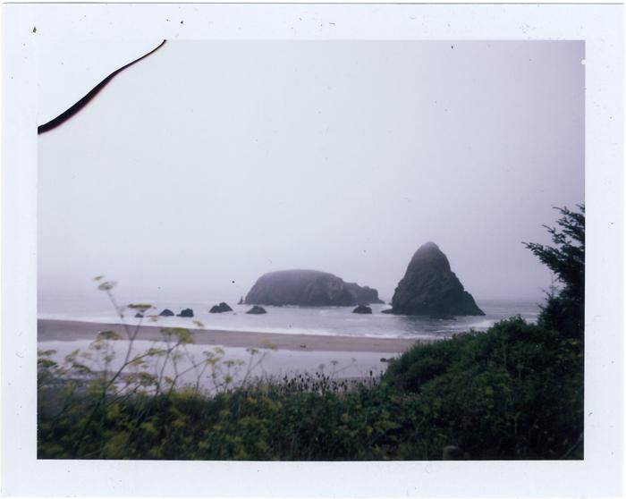 09.09.23 whaleshead